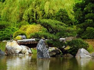 Postal: Bonito jardín