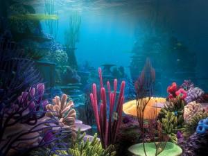 Postal: Peces en un fondo marino