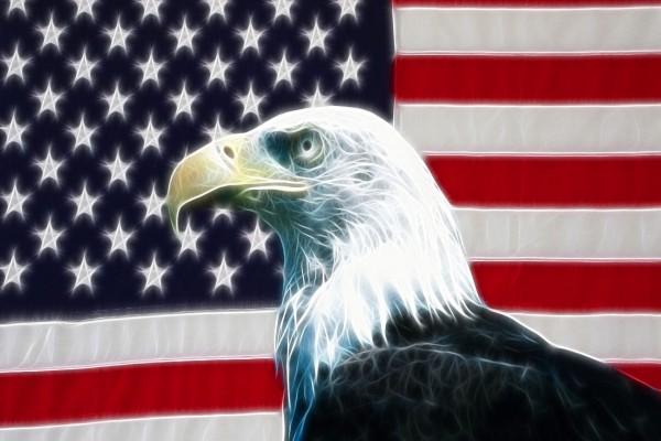 Águila y bandera estadounidense