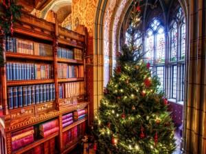 Biblioteca adornada con un árbol de Navidad