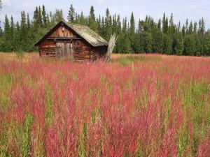 Casa de madera en Härjedalen