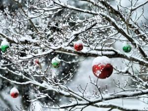 Postal: Árbol y bolas navideñas cubiertos de copos de nieve