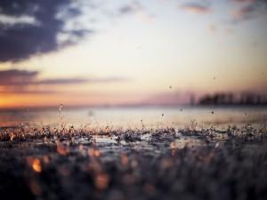 Postal: Lluvia sobre el suelo