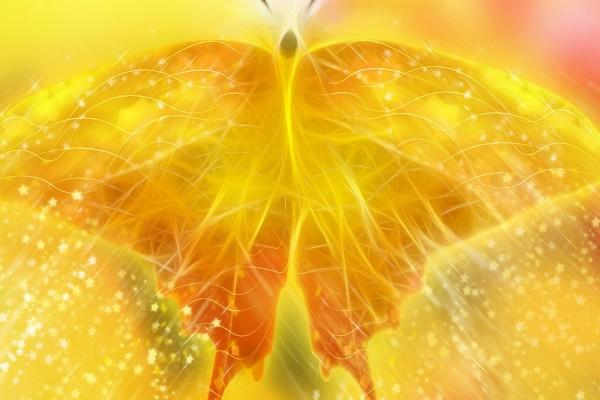 Alas de mariposa y estrellas
