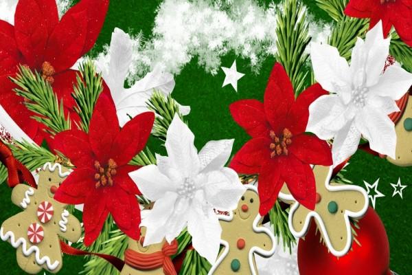 Galletas de jengibre y flores de pascua para Navidad