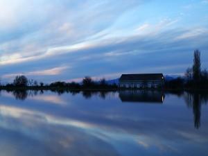 Amanecer reflejado en el agua
