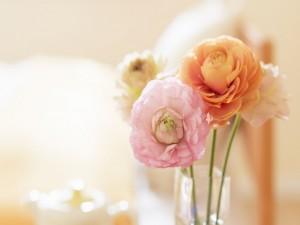 Postal: Calidez floral