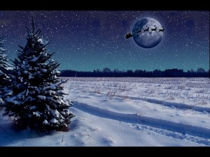 Postal: Noche navideña