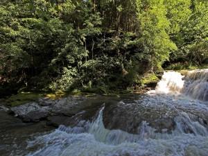Cascadas en la corriente del río