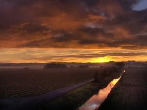 Nuevo día sobre los campos de cultivo