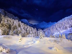 Campo cubierto de nieve visto en la noche