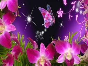 Mariposa y orquídeas color púrpura