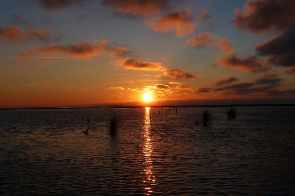 El sol en el cielo al amanecer