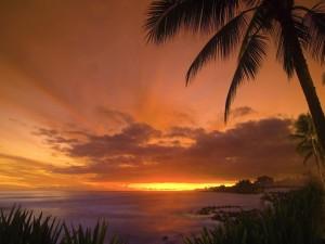 Postal: Hermoso cielo al amanecer
