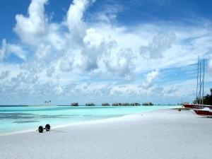Postal: Hermosa playa de arena fina