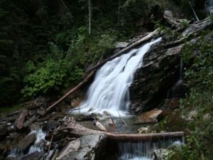 Troncos y piedras en la cascada