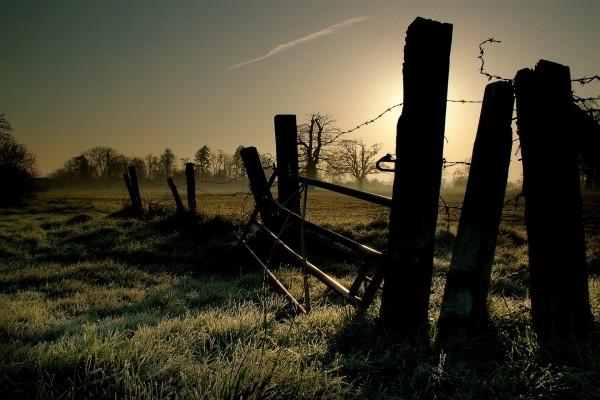 Alambrada en un campo