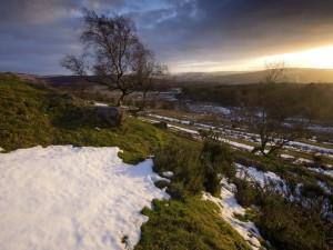 Postal: Colina nevada