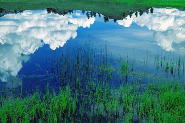 Cielo y nubes reflejados en el agua