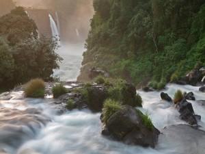 Postal: Cascadas en el río