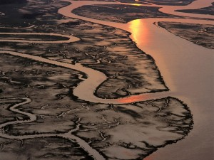 Postal: Río y afluentes