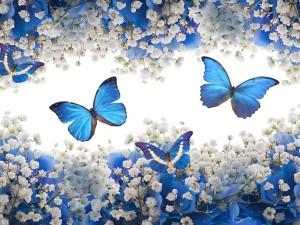 Postal: Mariposas volando entre flores azules y blancas