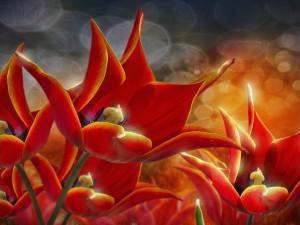 Magníficos tulipanes en 3D