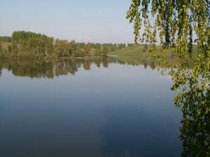 Postal: Lago en una zona verde