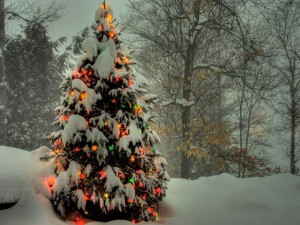 Un árbol de Navidad en la nieve