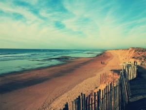 Postal: Gente paseando por una hermosa playa