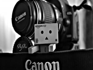 Postal: Danbo junto a una Canon