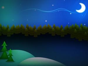 Postal: Bonita noche en el bosque