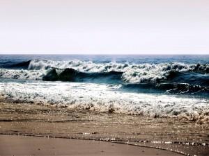 Olas en la playa