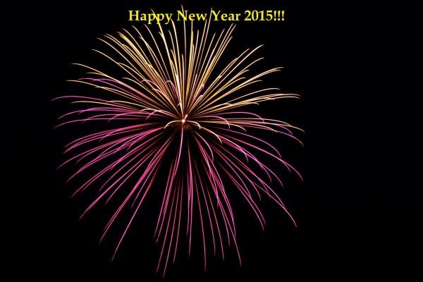 Fuegos artificiales y ¡Feliz Año Nuevo 2015!