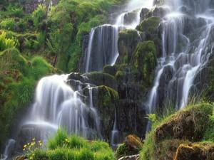 Bella cascada