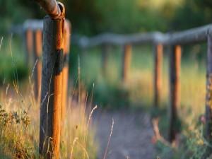 Barandilla de madera en el campo