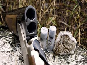 Escopeta y cartuchos