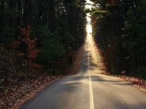 Coche alejándose en la carretera