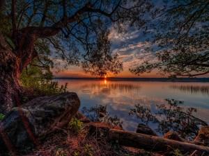 Postal: Amanecer en un bello lago