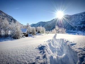 Los brillantes rayos del sol iluminan el paisaje nevado