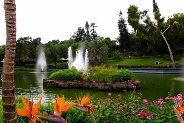 Fuentes en un estanque rodeado de hermosas flores