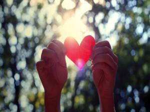 Corazón entre las manos