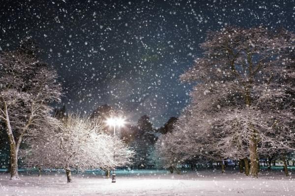 Nieve cayendo al anochecer en un parque