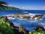 Arrecifes junto a la costa