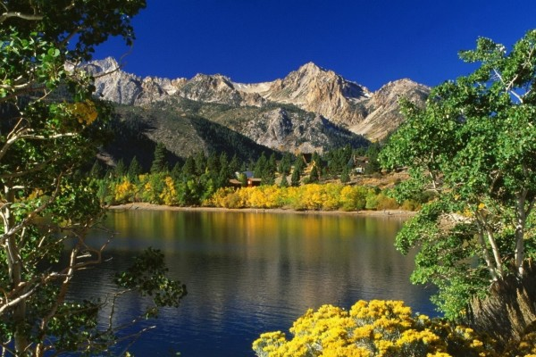 Un lago tranquilo rodeado de árboles y casas