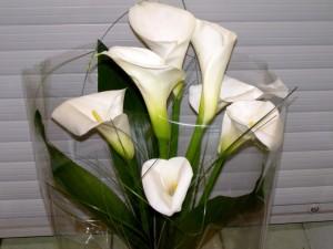 Espectacular arreglo floral con calas blancas