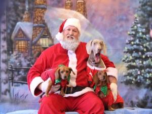Santa Claus amigo de los perros