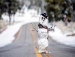 Muñeco de nieve en una carretera