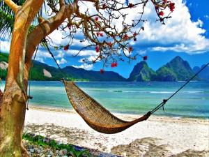 Postal: Relax en una playa