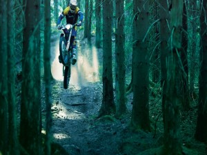 Motocross en el bosque